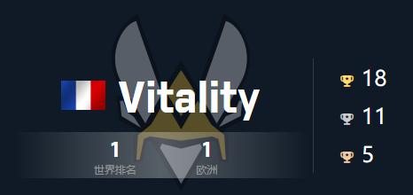 vitality戰隊cogo隊伍詳細介紹