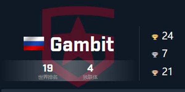 csgo战队Gambit成员队伍详细介绍